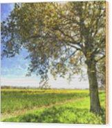 The Daffodil Summer Farm Art Wood Print