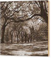 The Dance - Sepia Wood Print