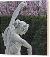 The Dancing Lesson Statue Wood Print
