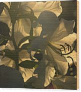 The Dark Accentuates The Light Wood Print