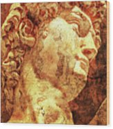 The David By Michelangelo Wood Print