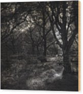 The Deep Forest Wood Print