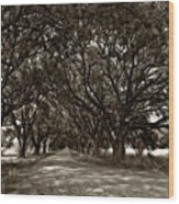 The Deep South Bw Wood Print