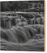 The Dells Of The Eau Claire Panoramic Wood Print