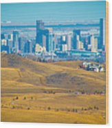 The Denver Skyline II Wood Print