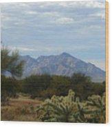The Desert Landscape Wood Print