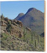 The Desert Mountains Wood Print