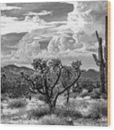 The Desert Speaks Wood Print