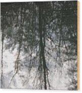 The Devic Pool 1 Wood Print
