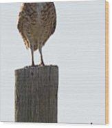 The Di Wood Print