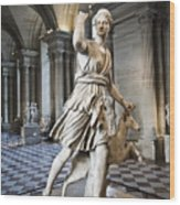 The Diana Of Versailles In The Louvre Wood Print
