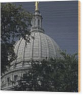 The Dome Of The Capitol Building Wood Print