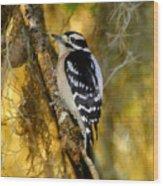 The Downy Woodpecker Wood Print