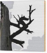 The Dragon Tree Wood Print