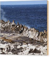 The Dragons Teeth II Wood Print