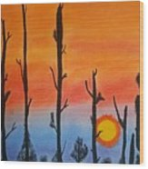 The Dryest Sunset Wood Print