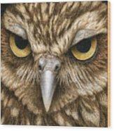 The Dubious Owl Wood Print