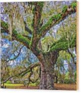 The Dueling Oak 2 Wood Print