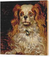 The Duke Of Marlborough. Portrait Of A Puppy Wood Print