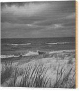 The Dunes In Winter Wood Print