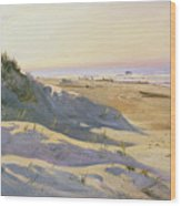 The Dunes Sonderstrand Skagen Wood Print by Holgar Drachman