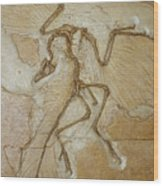 The Earliest Bird, Archaeopteryx Wood Print by Jason Edwards