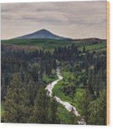 The Elberton View Wood Print