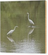 The Egret Pond Wood Print