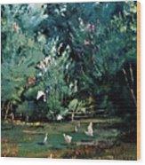 The Egrets Have Landed Wood Print