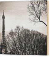 The Eiffel Tower In Backlighting. Paris. France. Europe. Wood Print