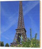 The Eiffel Tower In Spring Wood Print
