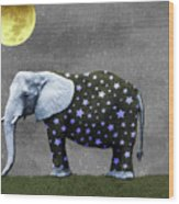 The Elephant And The Moon Wood Print