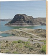 The Elephant At Elephant Butte Lake  Wood Print by Allen Sheffield