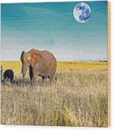 The Elephant Herd Wood Print