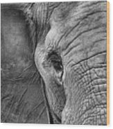The Elephant In Black And White Wood Print