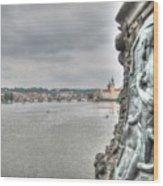 the embankment Praha Wood Print