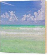 The Emerald Shore Of Destin, Fl Wood Print