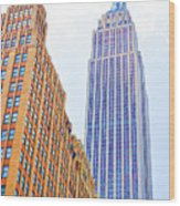 The Empire State Building 4 Wood Print