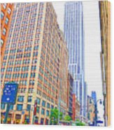 The Empire State Building 5 Wood Print