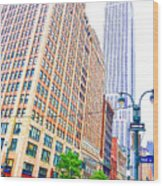 The Empire State Building 6 Wood Print