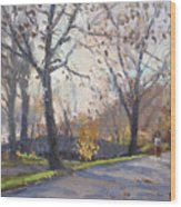 The End Of Fall At Three Sisters Islands Wood Print