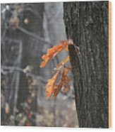 The End Of Fall Wood Print