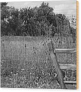 The End Of The Fence Bw Wood Print