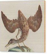 The Eurasian Bittern Or Great Bittern Wood Print