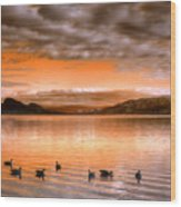 The Evening Geese Wood Print