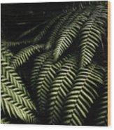 The Exotic Dark Jungle Wood Print