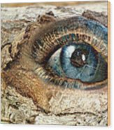 The Eye Of Nature 1 Wood Print
