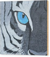 The Eye Of The Tiger Wood Print