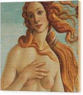The Face Of Venus Wood Print