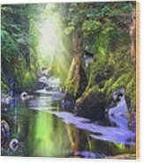 The Fairy Glen Gorge River Conwy Wood Print